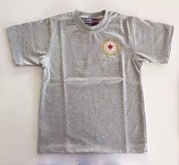 T-Shirt Gris - ECB